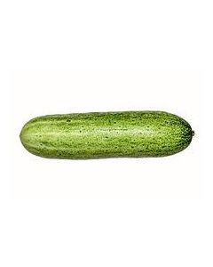 Cucumber (Kheera)